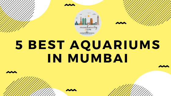 5 best aquariums in Mumbai